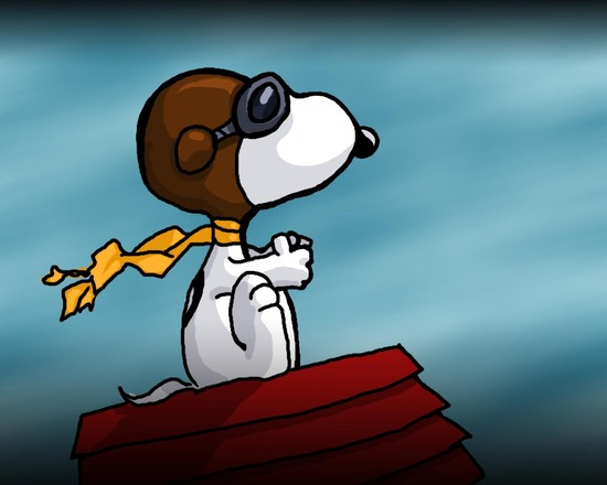 Snoopy vs, the Red Baron.