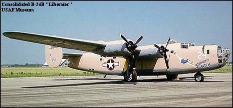 Strawberry Bitch B-24.